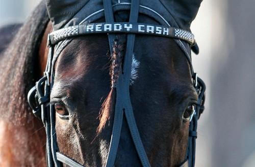 ready-cash